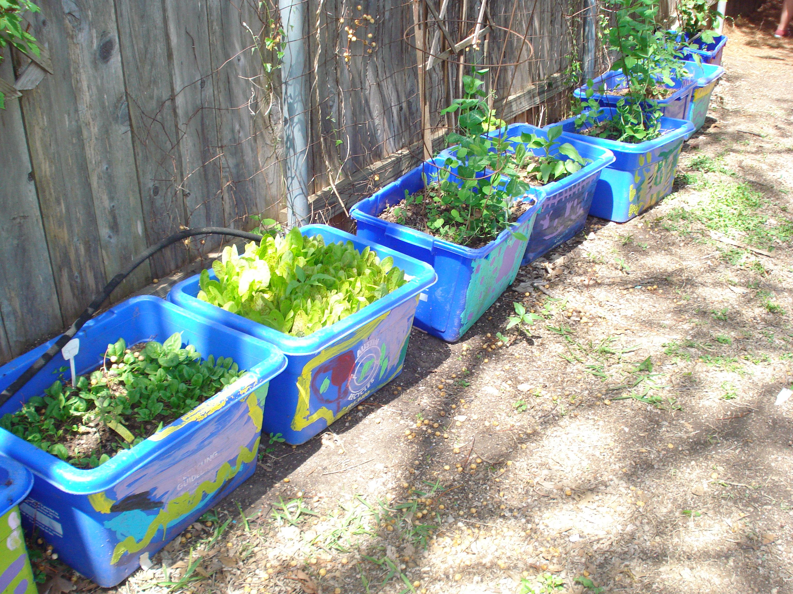 Funky backyard gardens on pinterest bamboo fence deck for Funky garden designs