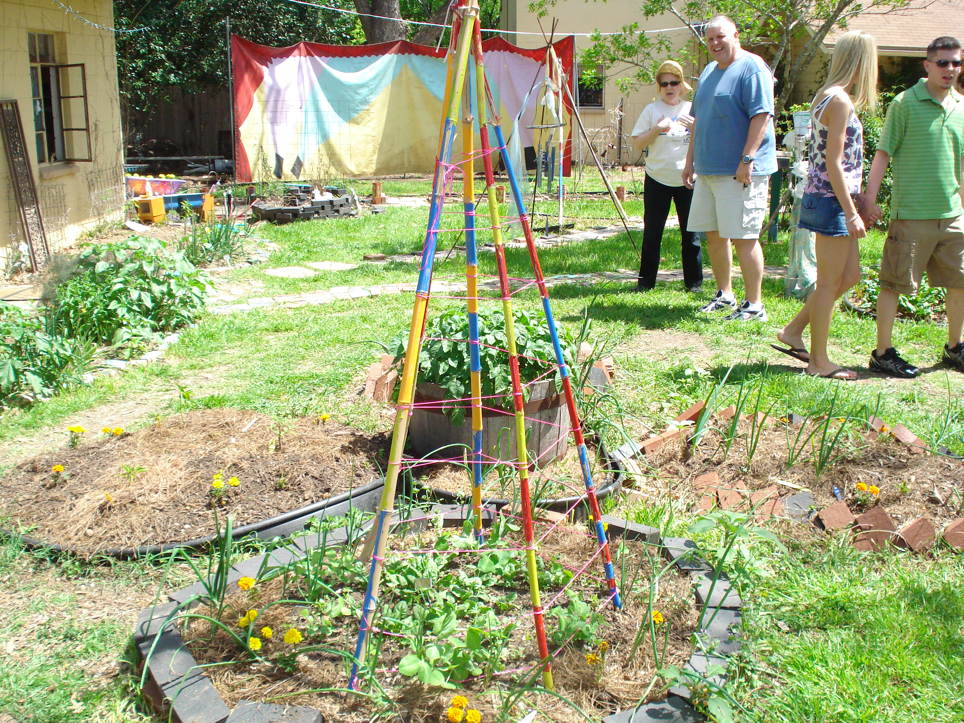 1000 images about funky backyard gardens on pinterest for Funky garden designs