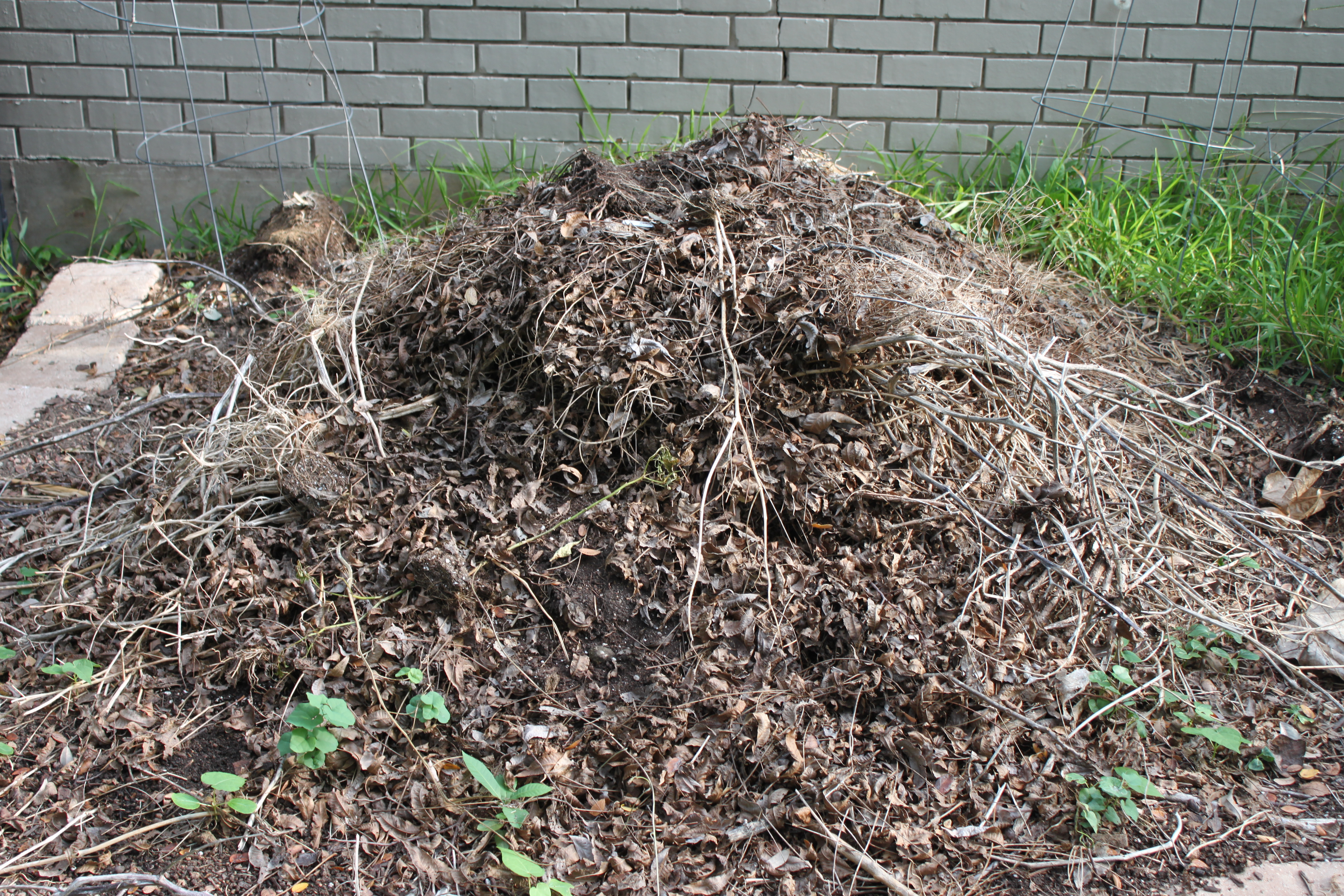 Backyard Mulch Pile : Garden Chores ? Tackling the Compost Pile  Austin Urban Gardens