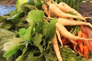Pile o veggies