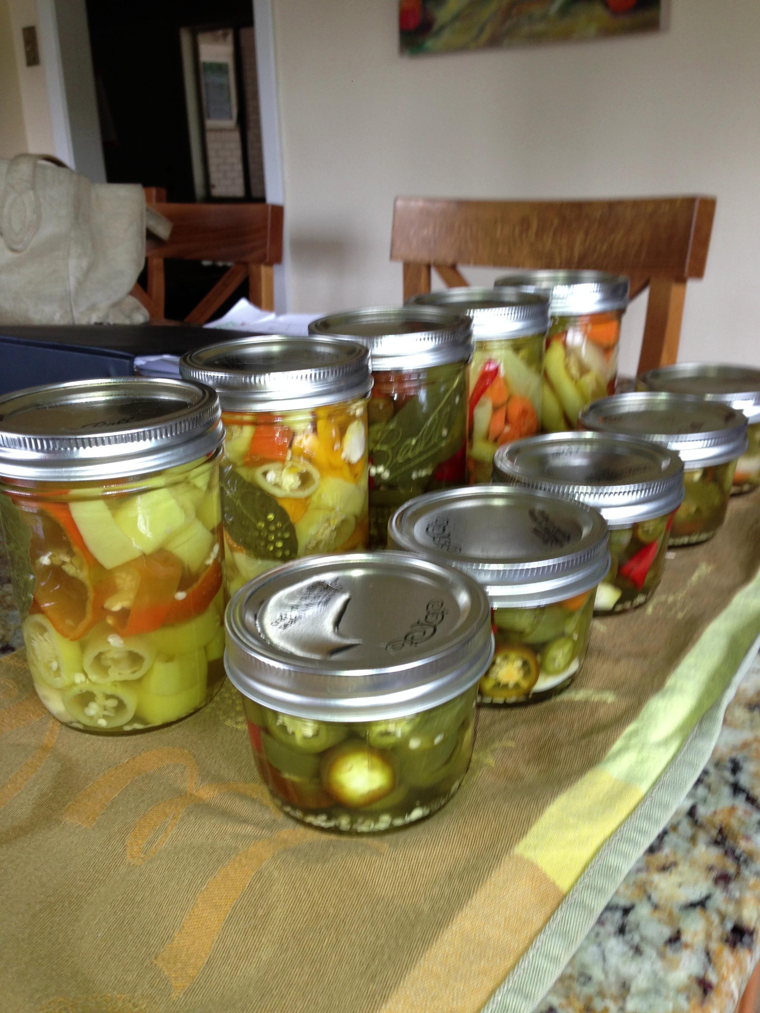 A Plethora of Peppers (Austin Urban Gardens)