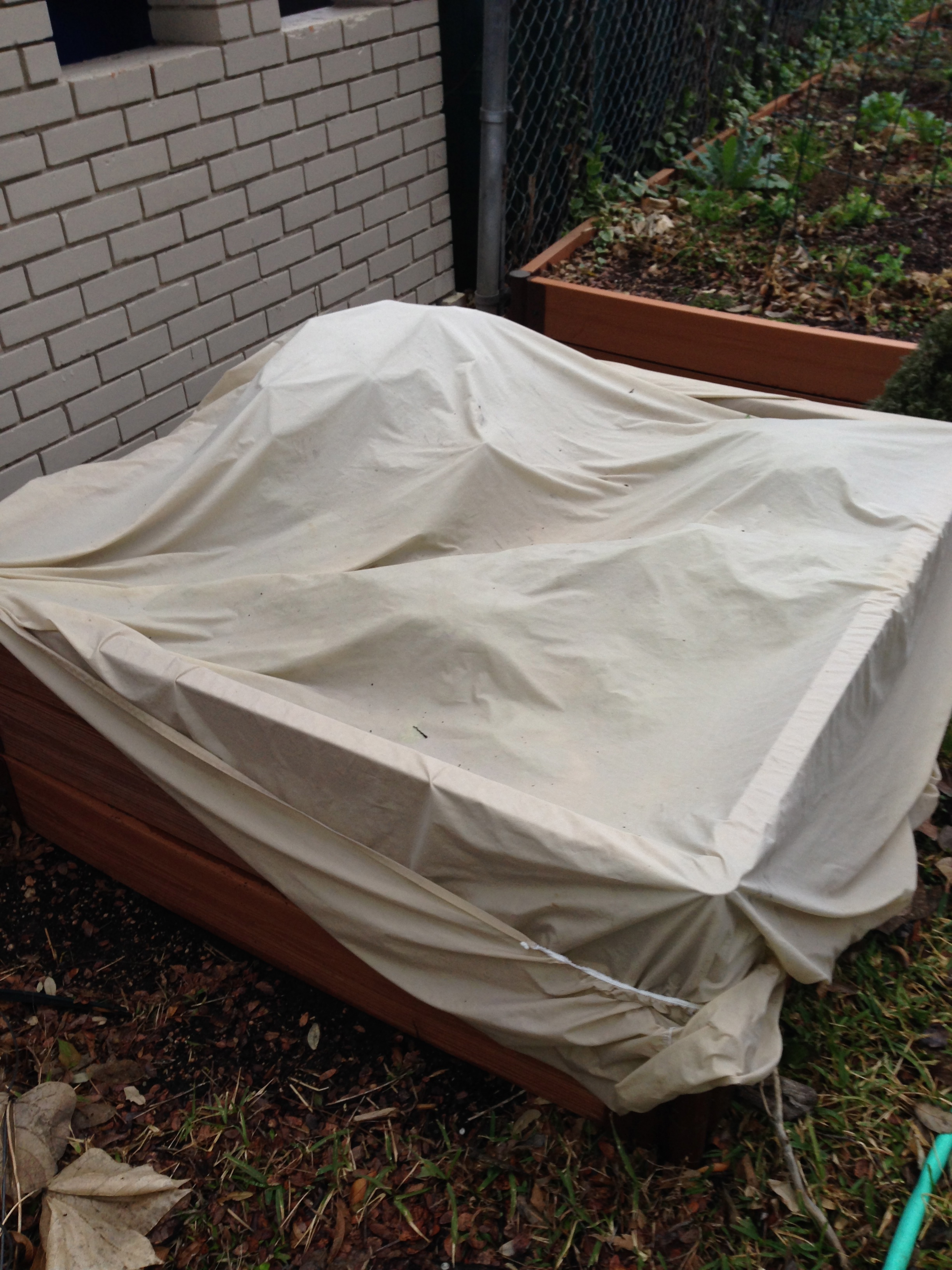 Herb Bed Prepped For Freeze