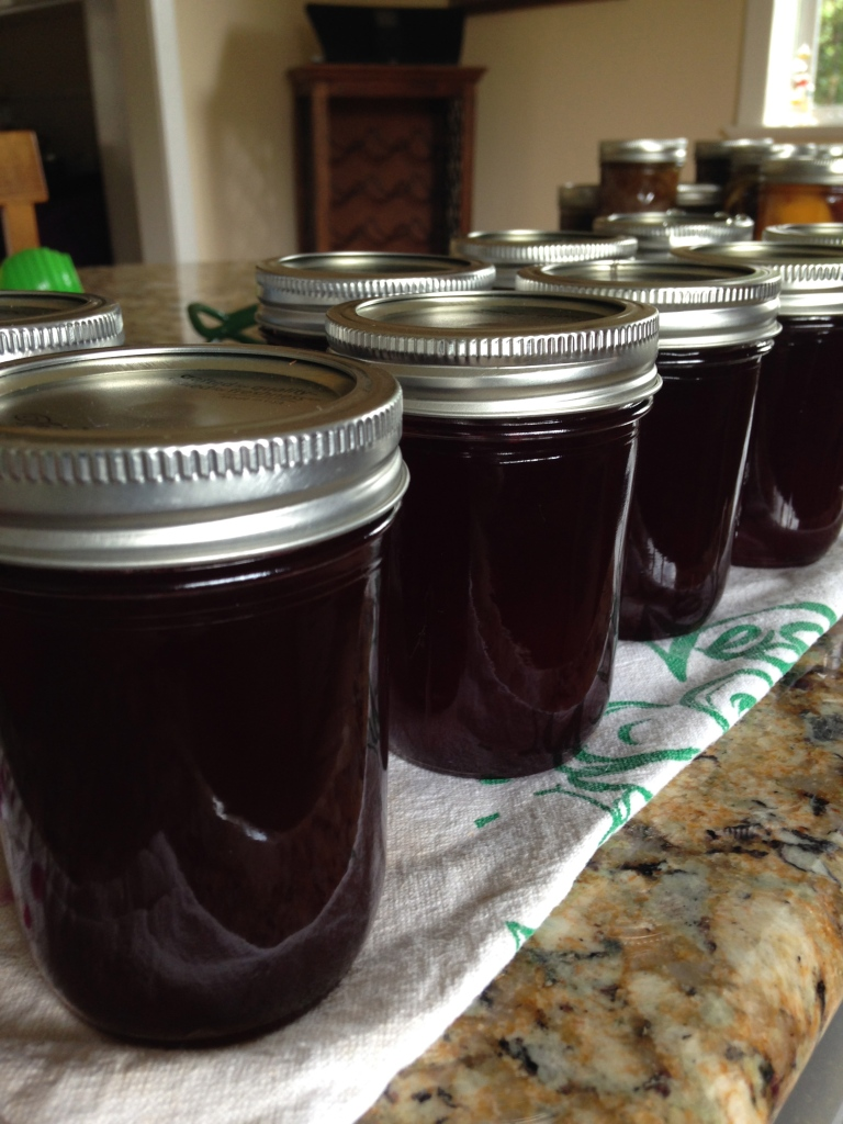 Homemade Jelly from the Yard!