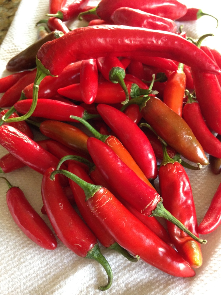 Red Serrano Peppers