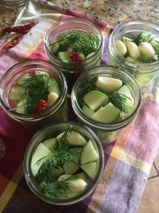 Garlic Dills